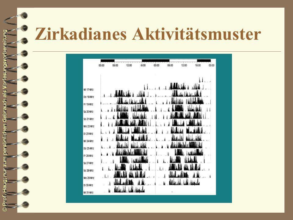 © Prof. Haug; nur zum persönlichen Gebrauch als Vorlesungsvorbereitung Zirkadianes Aktivitätsmuster