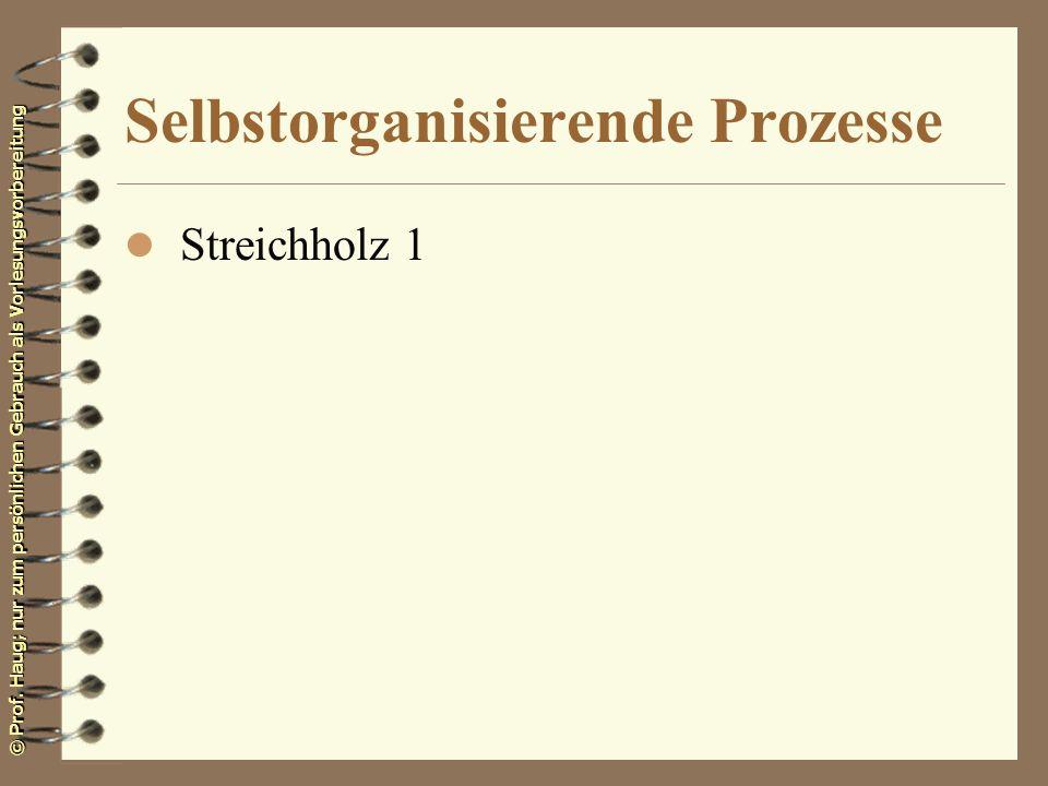 © Prof. Haug; nur zum persönlichen Gebrauch als Vorlesungsvorbereitung Selbstorganisierende Prozesse l Streichholz 1