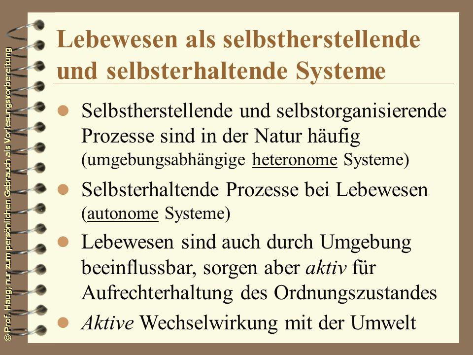 © Prof. Haug; nur zum persönlichen Gebrauch als Vorlesungsvorbereitung Lebewesen als selbstherstellende und selbsterhaltende Systeme l Selbstherstelle