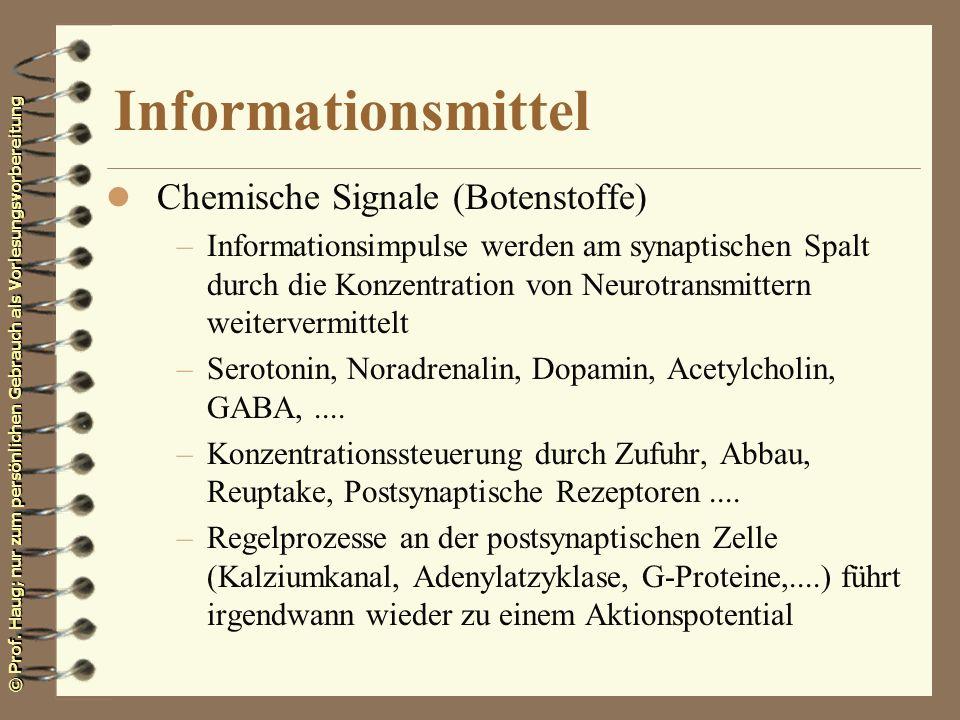 © Prof. Haug; nur zum persönlichen Gebrauch als Vorlesungsvorbereitung Informationsmittel l Chemische Signale (Botenstoffe) –Informationsimpulse werde