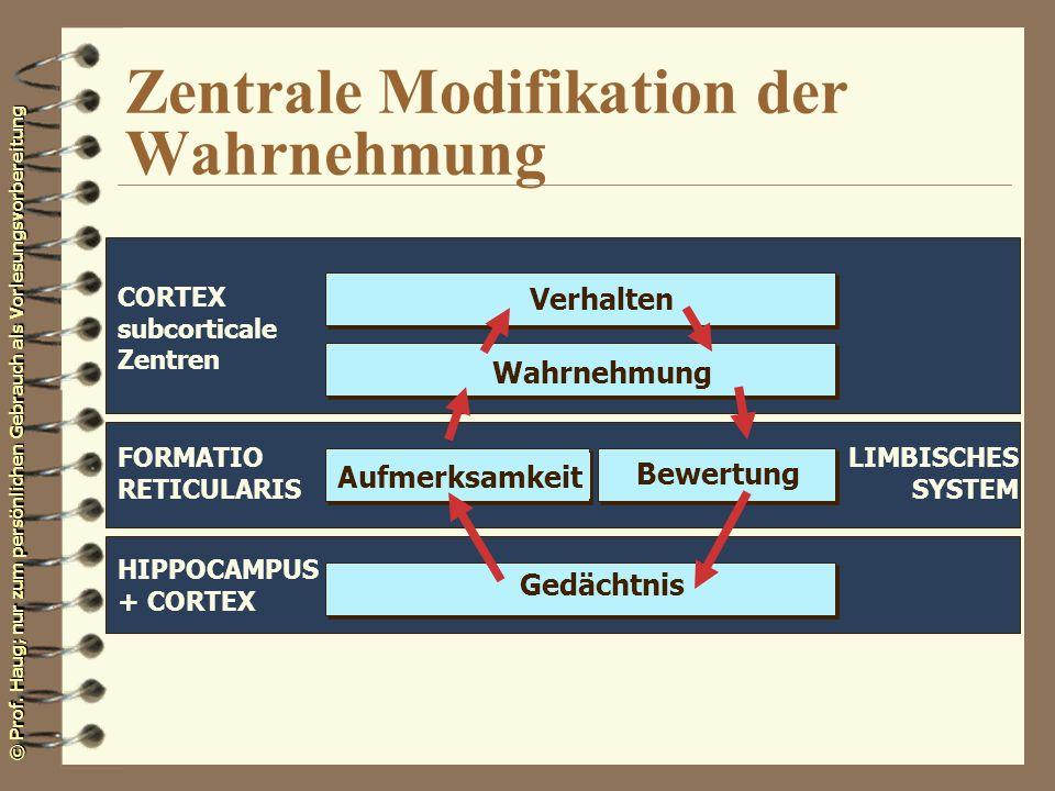 © Prof. Haug; nur zum persönlichen Gebrauch als Vorlesungsvorbereitung Zentrale Modifikation der Wahrnehmung Verhalten Wahrnehmung Aufmerksamkeit Bewe