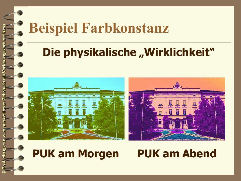 © Prof. Haug; nur zum persönlichen Gebrauch als Vorlesungsvorbereitung Beispiel Farbkonstanz PUK am MorgenPUK am Abend Die physikalische Wirklichkeit