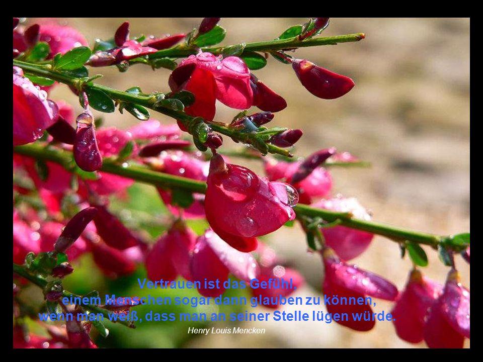 Sie können wohl alle Blumen abschneiden, aber sie können den Frühling nicht verhindern.