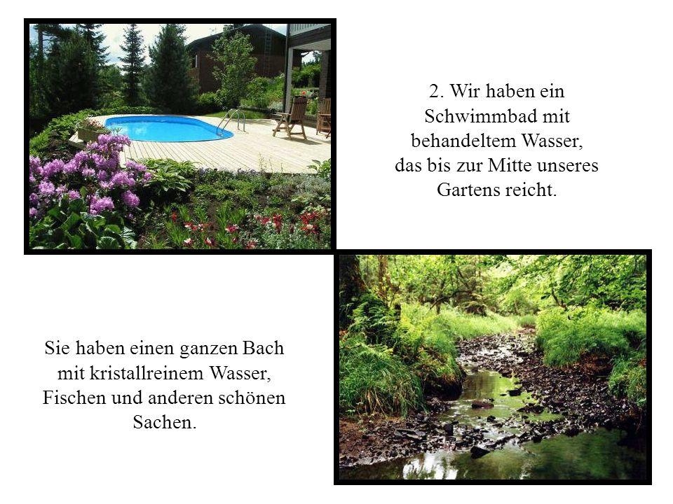 2.Wir haben ein Schwimmbad mit behandeltem Wasser, das bis zur Mitte unseres Gartens reicht.