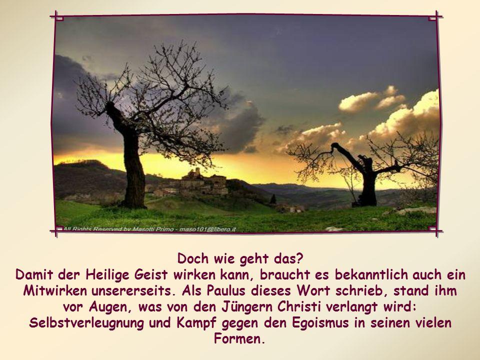Tatsächlich sind diejenigen, die sich vom Geist leiten lassen, Tag für Tag herausgefordert, den guten Kampf des Glaubens 3) zu kämpfen, um das Böse zu