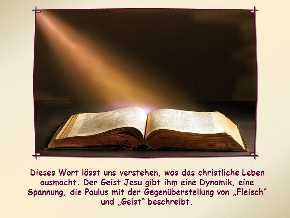 Alle, die sich vom Geist Gottes leiten lassen, sind Söhne Gottes.
