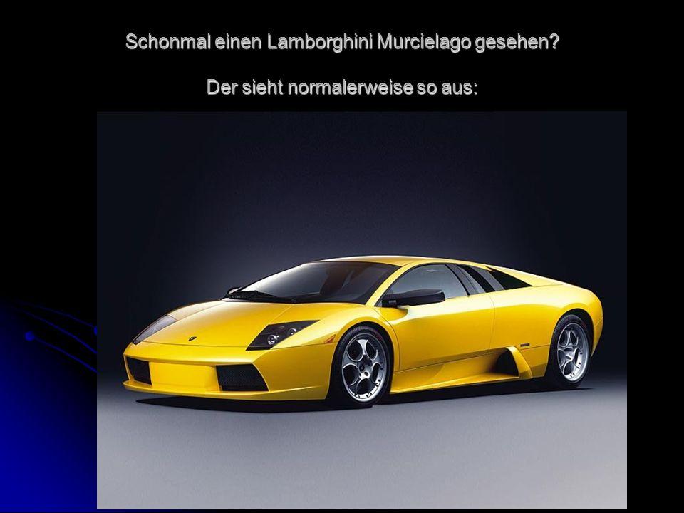 Schonmal einen Lamborghini Murcielago gesehen Der sieht normalerweise so aus: