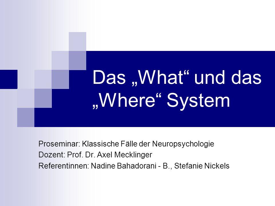 Das What und das Where System Proseminar: Klassische Fälle der Neuropsychologie Dozent: Prof. Dr. Axel Mecklinger Referentinnen: Nadine Bahadorani - B