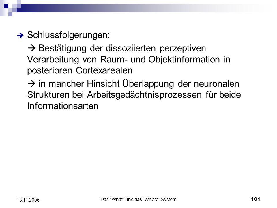 Das What und das Where System102 13.11.2006 Probleme der bisher angeführten Studien - widersprüchliche Befunde bzgl.