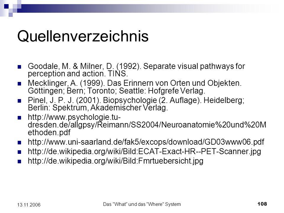 Das What und das Where System109 13.11.2006 Vielen Dank für eure Aufmerksamkeit!
