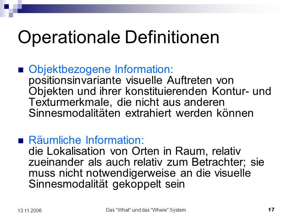 Das What und das Where System18 13.11.2006 Evidenz aus der Linguistik Landau und Jackendoff (1993) Nomen Präpositionen und Adverben