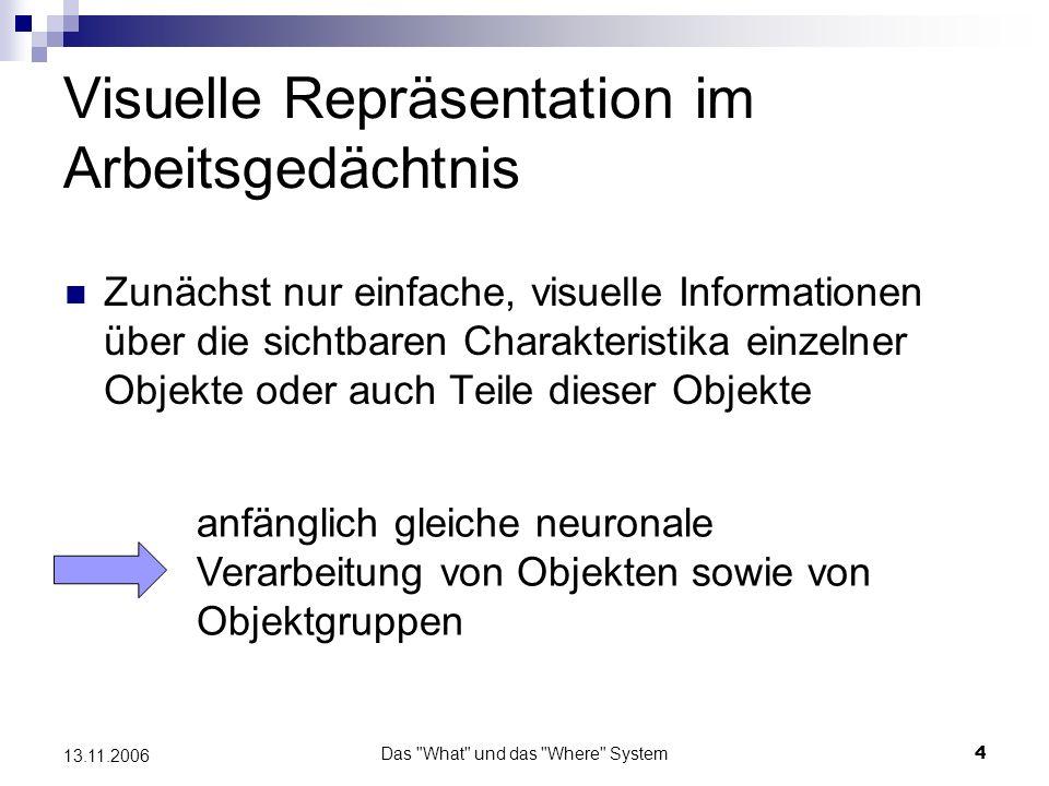 Das What und das Where System5 13.11.2006 Identifizierung on Objekten Bei diesem anschließenden Schritt müssen voneinander unabhängig ausgewertet werden und Zusammengesetzte visuelle Muster Räumliche Informationen