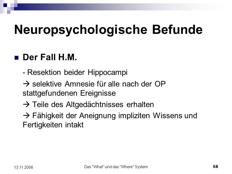 Das What und das Where System59 13.11.2006