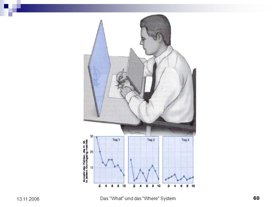 Das What und das Where System61 13.11.2006 Zentrale neuropsychologische Befunde (zur Dissoziation räumlicher und objektbezogener Verarbeitung) - Läsionen in den dorsalen und ventralen Projektionssystemen selektive Ausfälle visuell- räumlicher Leistungen - Läsionen im occipito-temporalen Bereich Objektagnosien, Prosopagnosie, Achromatopsie - Läsionen im parieto-occipitalen Bereich optische Ataxie, visuellen Neglect, konstruktive Apraxie, Blickbewegungsapraxie, Akinetopsie