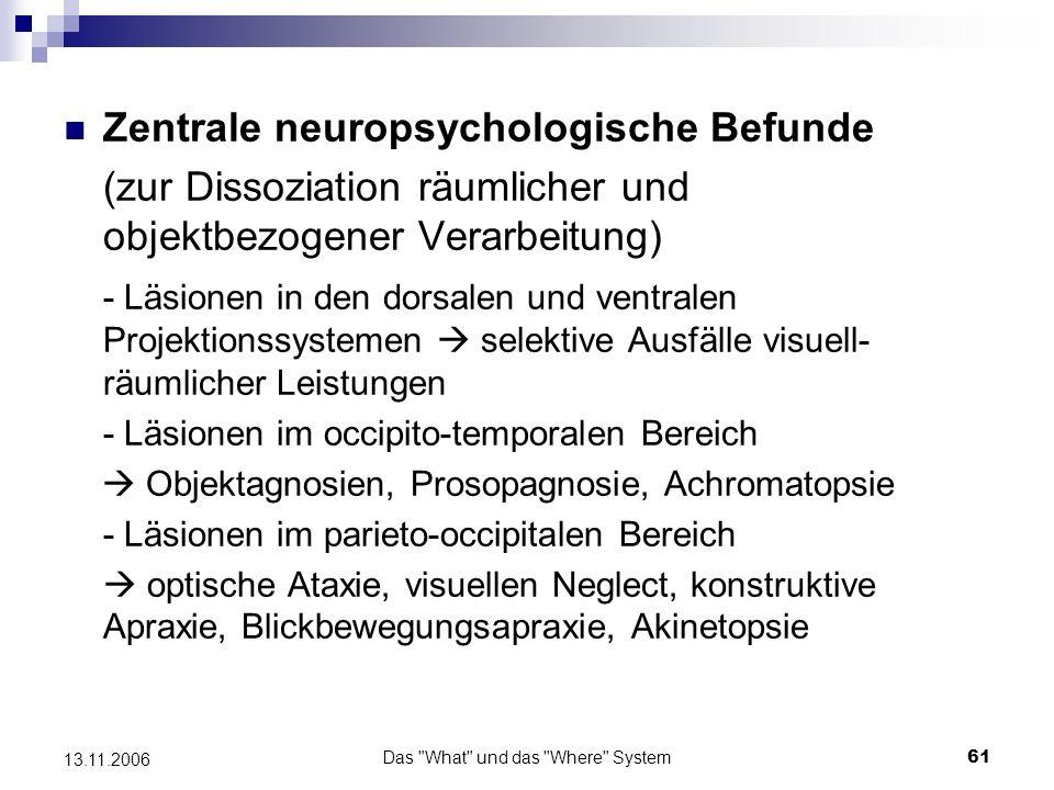 Das What und das Where System62 13.11.2006 Beispiele: Newcombe, Ratcliff, Damasio (1987) - doppelte Dissoziation visueller und räumlicher Erkennungsleistungen bei zwei Patienten Patient 1: - rechtsseitige Läsion im parieto-occipitalen Cortexbereich starke Beeinträchtigung beim Bearbeiten einer maze learning Aufgabe (mit Hilfe eines Zeigers musste ein Weg durch ein zweidimensionales Labyrinth gelernt werden) andere intellektuelle Fähigkeiten (auch bzgl.