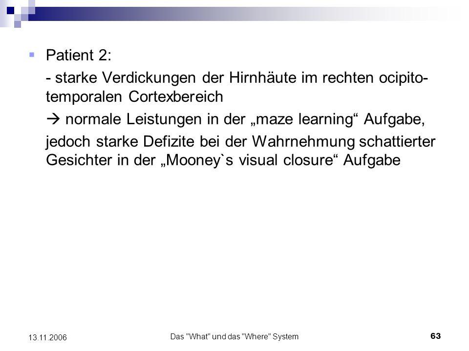 Das What und das Where System64 13.11.2006 Der Fall L.H.