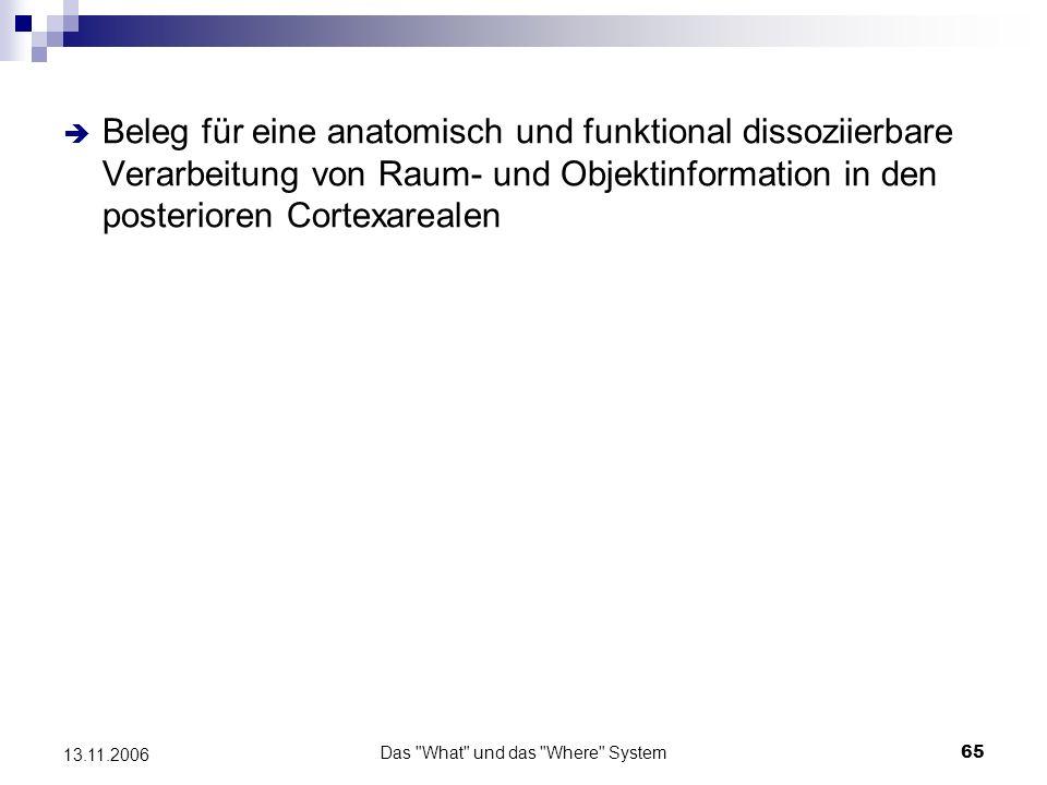 Das What und das Where System66 13.11.2006 What & where oder what & how.