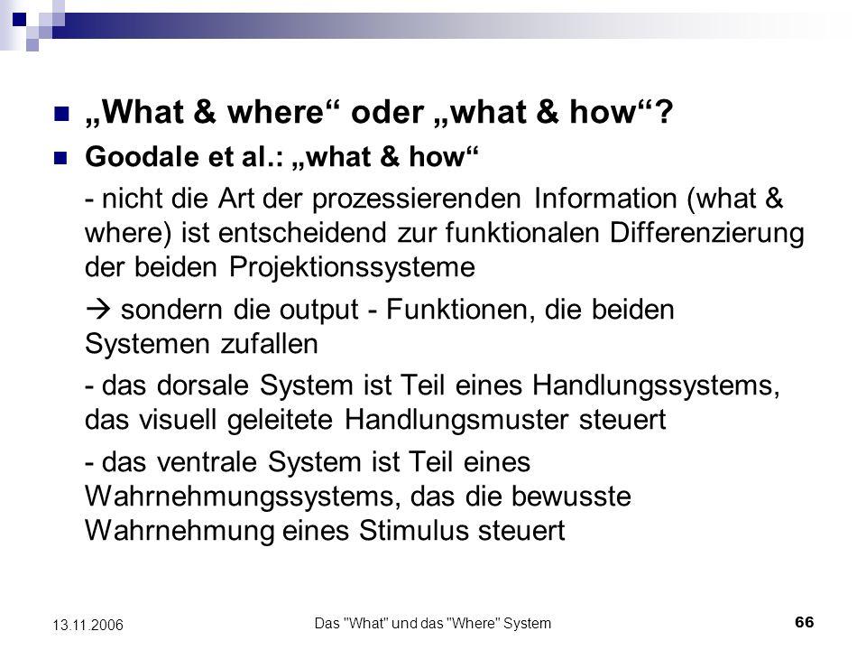 Das What und das Where System67 13.11.2006 Beleg der Theorie von Goodale et al.