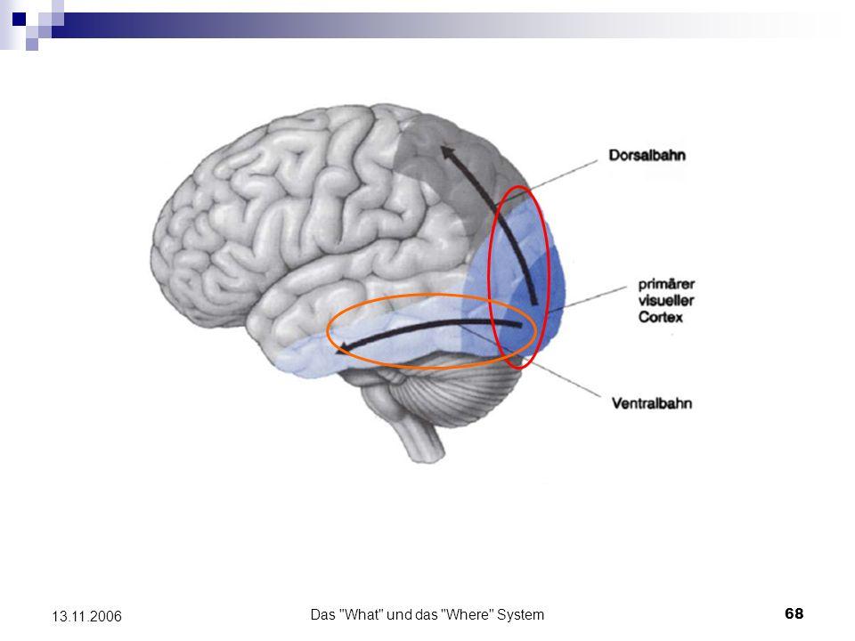 Das What und das Where System69 13.11.2006 Beleg der Theorie von Goodale et al.