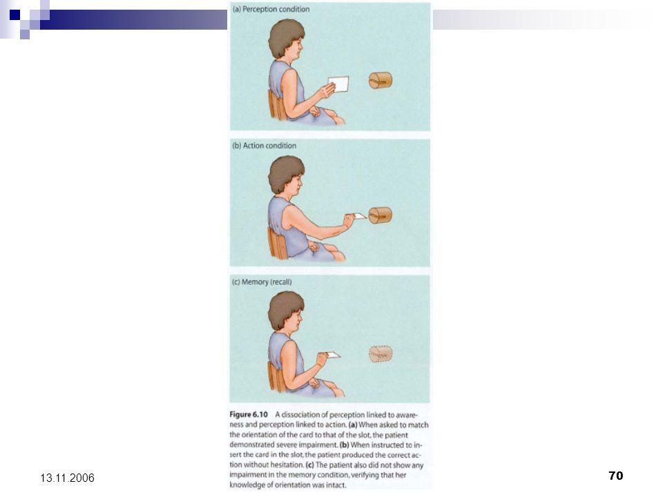 Das What und das Where System71 13.11.2006 Verarbeitung handlungsrelevanter Struktur- und Orientierungscharakteristika von Objekten und deren räumlicher Relation in der dorsalen Bahn Neuronen in den posterior parietalen Cortexregionen leisten eine betrachterzentrierte Kodierung der Oberfläche und der Kontur von Objekten Kodierung der Objektcharakteristika erfolgt objektzentriert durch Neurone des ventralen Systems