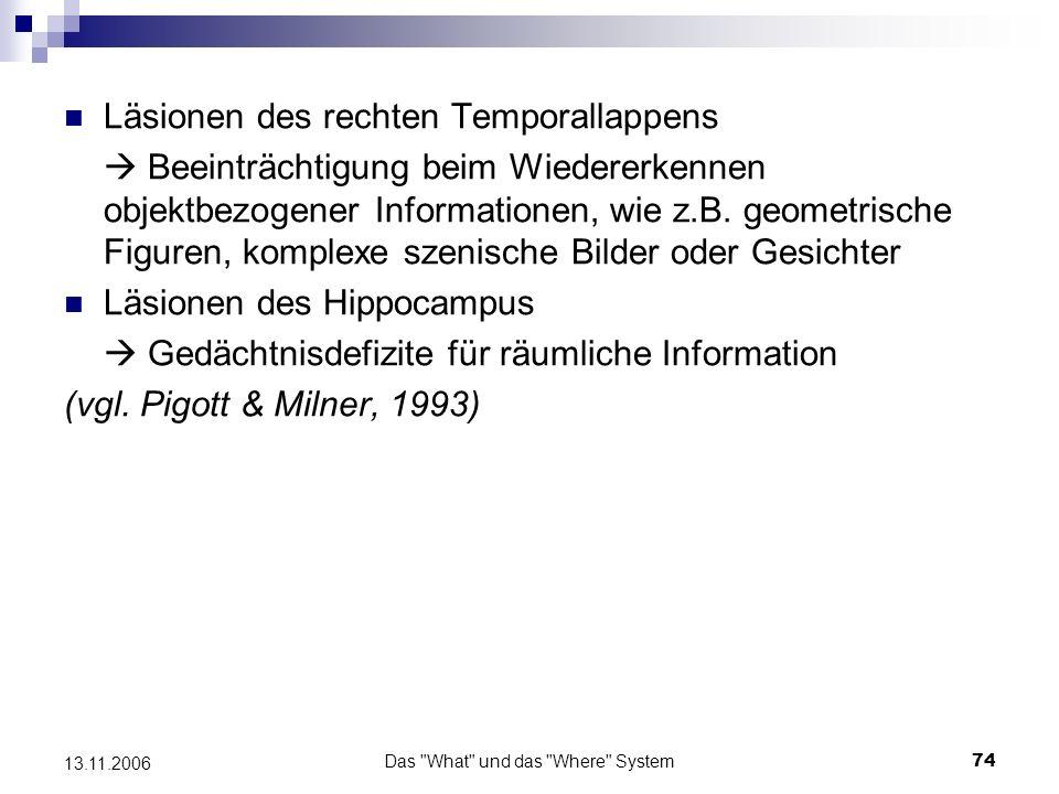 Das What und das Where System75 13.11.2006 Ergebnisse der Untersuchung v.