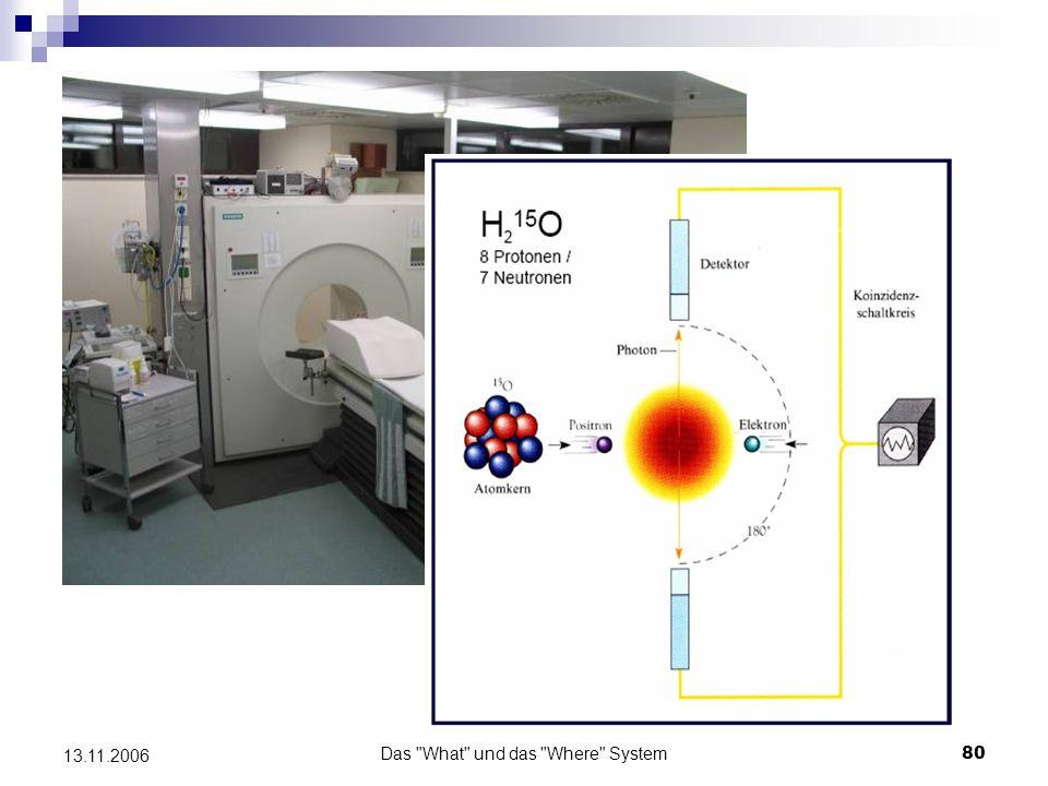Das What und das Where System81 13.11.2006 Funktionelle Magnetresonanztomographie (fMRT) - Magnetresonanz: Protonen werden durch ein eingestrahltes Magnetfeld in Feldrichtung ausgelenkt - Zugabe hochfrequenter Pulse infolge dessen Ausrichtung der Protone in spezifischer Weise - nach Beendigung der Pulszugabe Protonen schwingen in ihren Ausgangszustand zurück auf Grund der Bewegung ihres elektromagnetischen Moments: Aussenden einer Hochfrequenzstrahlung