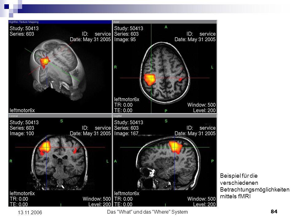 Das What und das Where System85 13.11.2006 PET und fMRI Befunde zur visuellen Verarbeitung und zum Arbeitsgedächtnis für Raum- und Objektinformation Befunde zur visuellen Verarbeitung Studien von Haxby et al.