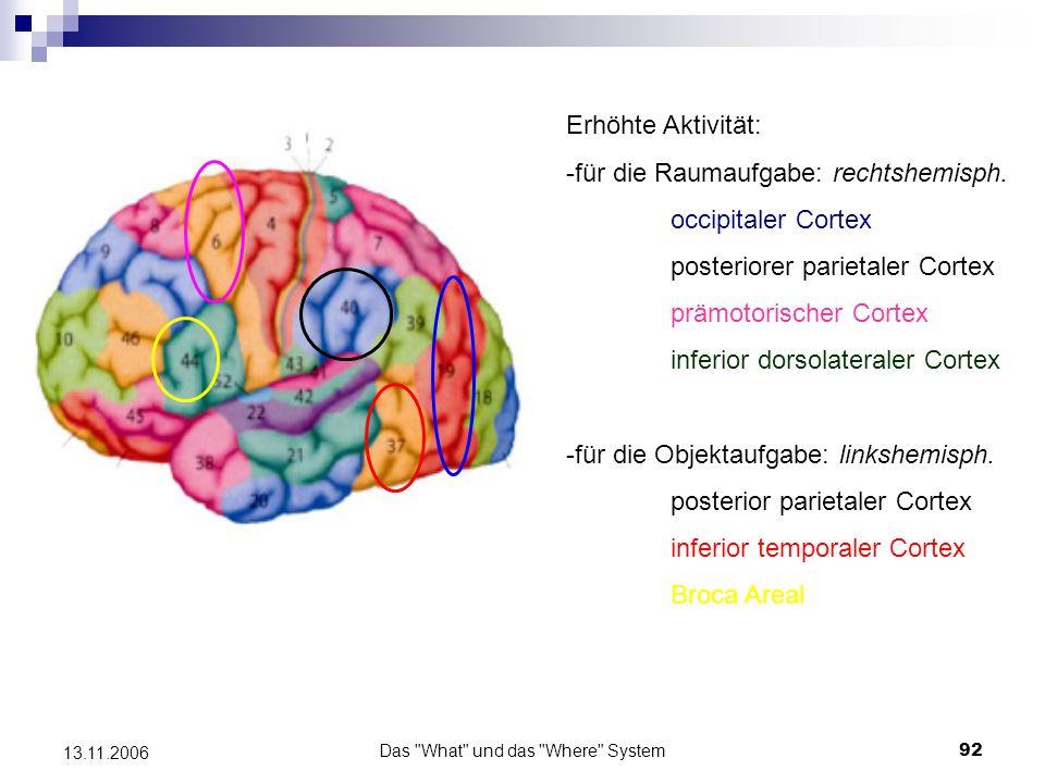 Das What und das Where System93 13.11.2006 Kritik an den Ergebnissen von Jonides et al., 1993 - Verwendung unterschiedlicher Stimuli für beide Gedächtnisaufgaben möglich, dass die geometrischen Figuren, nicht aber die Punkte, verbal rekodiert und subvokal wiederholt wurden - selektive Aktivierungszunahme in der Broca Area könnte verbale Kontrollprozesse, weniger die Speicherung visueller Information, beim Memorieren der Objekte induzieren - Gebrauch unterschiedlicher Zielreize in Gedächtnis- und Kontrollaufgaben rCBF Differenzen könnten auch durch differentielle Enkodierungsprozesse zustande gekommen sein