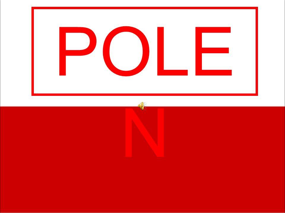 POLE N