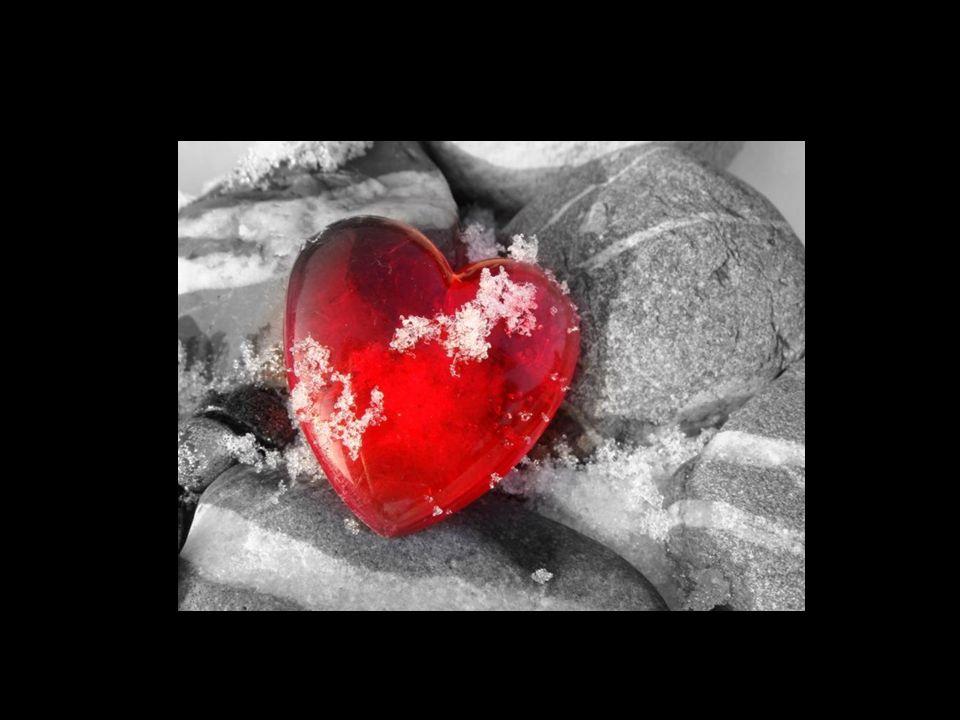 Das Schönste an der Liebe ist das Zusammenwachsen, das Zweitschönste das zusammen Wachsen. © Ernst Ferstl