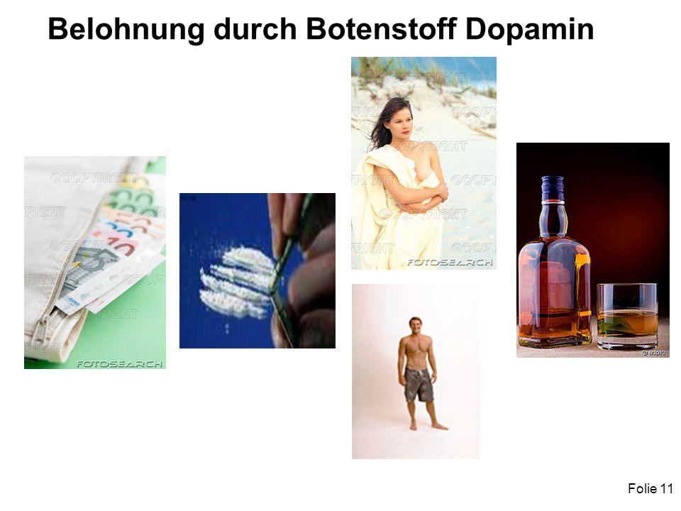 Folie 11 Belohnung durch Botenstoff Dopamin