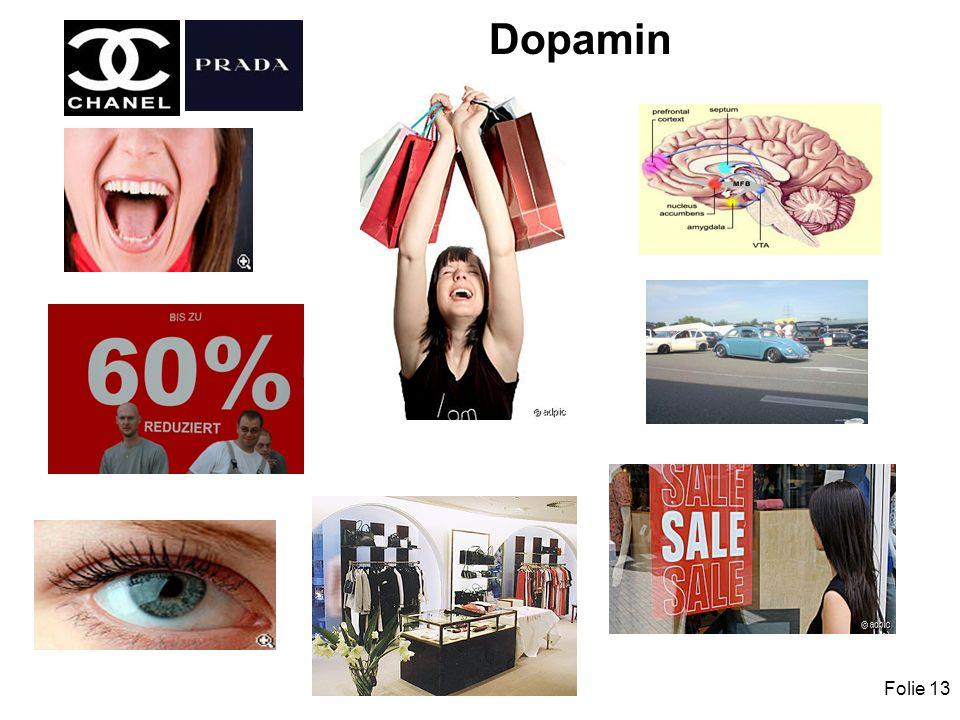Folie 13 Dopamin