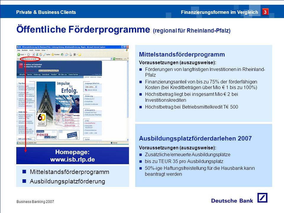 Private & Business Clients Business Banking 2007 Öffentliche Förderprogramme (regional für Rheinland-Pfalz) Mittelstandsförderprogramm Ausbildungsplat