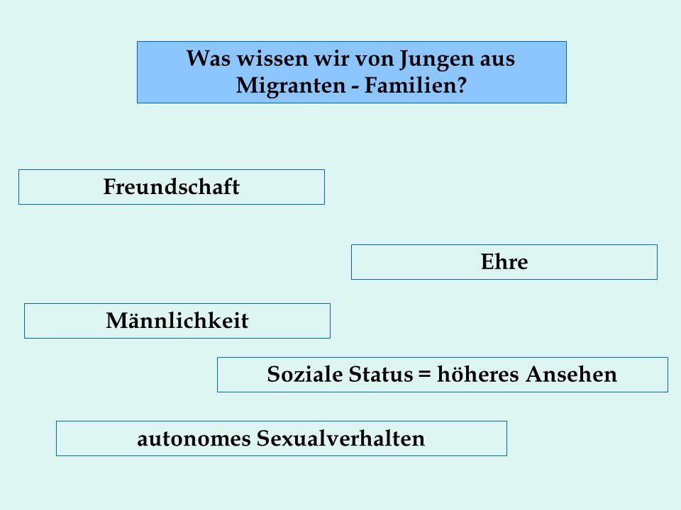 Was wissen wir von Jungen aus Migranten - Familien.