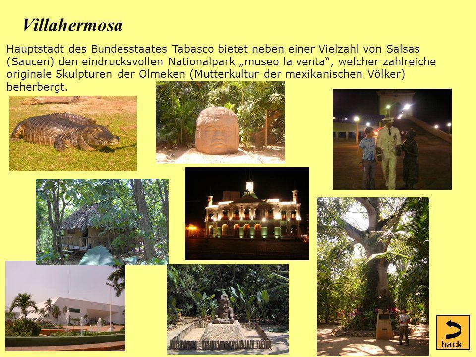 Villahermosa Hauptstadt des Bundesstaates Tabasco bietet neben einer Vielzahl von Salsas (Saucen) den eindrucksvollen Nationalpark museo la venta, welcher zahlreiche originale Skulpturen der Olmeken (Mutterkultur der mexikanischen Völker) beherbergt.