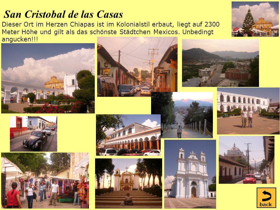 San Cristobal de las Casas Dieser Ort im Herzen Chiapas ist im Kolonialstil erbaut, liegt auf 2300 Meter Höhe und gilt als das schönste Städtchen Mexicos.