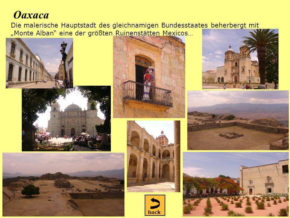 Oaxaca Die malerische Hauptstadt des gleichnamigen Bundesstaates beherbergt mit Monte Alban eine der größten Ruinenstätten Mexicos… back