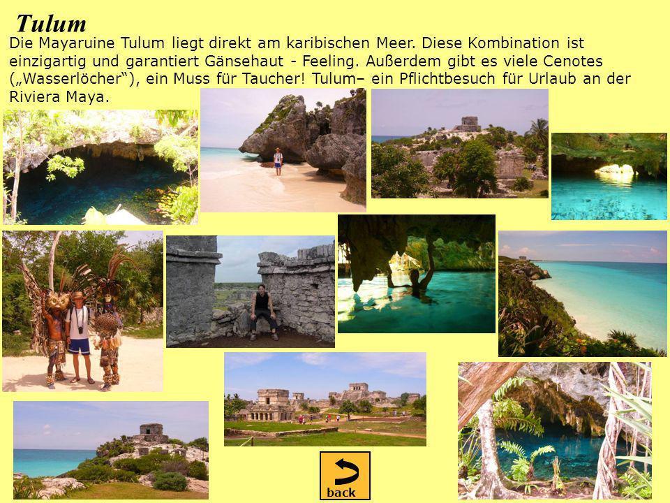 Tulum Die Mayaruine Tulum liegt direkt am karibischen Meer.