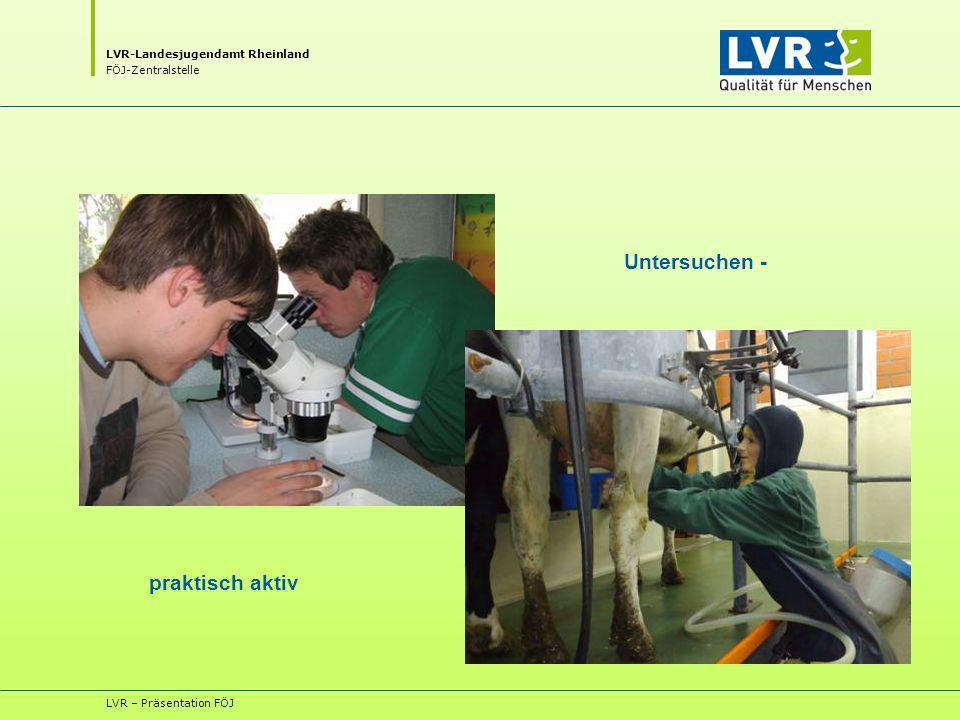 LVR-Landesjugendamt Rheinland FÖJ-Zentralstelle LVR – Präsentation FÖJ Untersuchen - praktisch aktiv