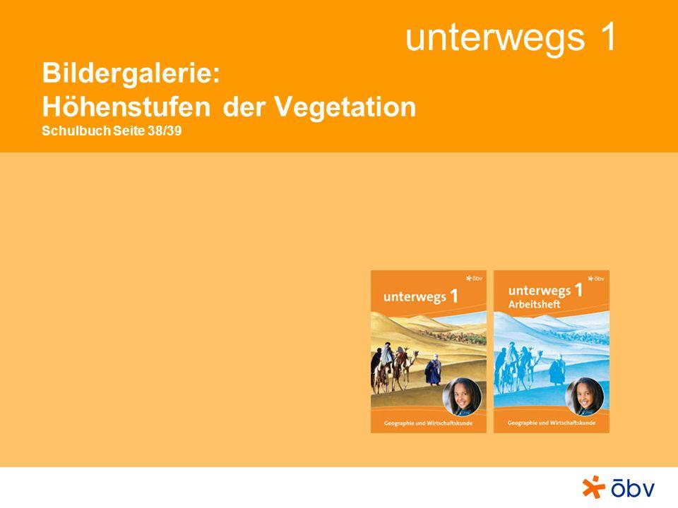 © Österreichischer Bundesverlag Schulbuch GmbH & Co KG, Wien 2012 | www.oebv.at unterwegs 1 Höhenstufen der Vegetation Die Stufe der Almen Auf den Almwiesen blühen unter anderen verschiedene Arten von (blauen) Glockenblumen und der (gelbe) Wiesenbocksbart.