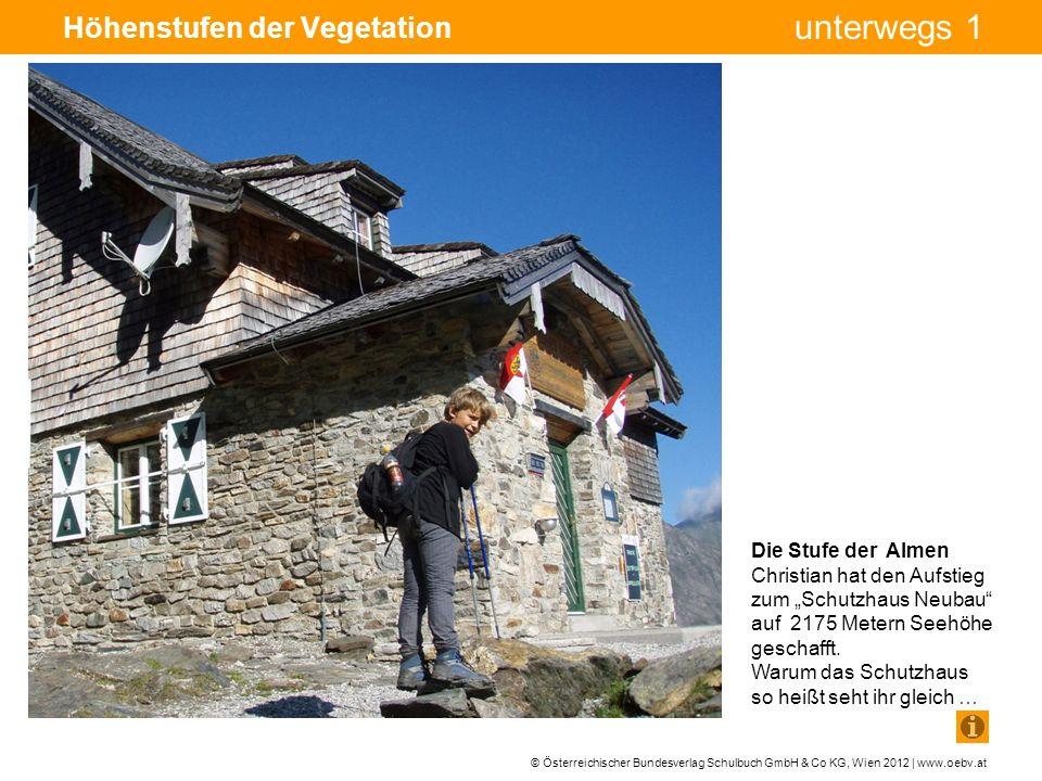 © Österreichischer Bundesverlag Schulbuch GmbH & Co KG, Wien 2012 | www.oebv.at unterwegs 1 Höhenstufen der Vegetation Die Stufe der Almen Christian hat den Aufstieg zum Schutzhaus Neubau auf 2175 Metern Seehöhe geschafft.