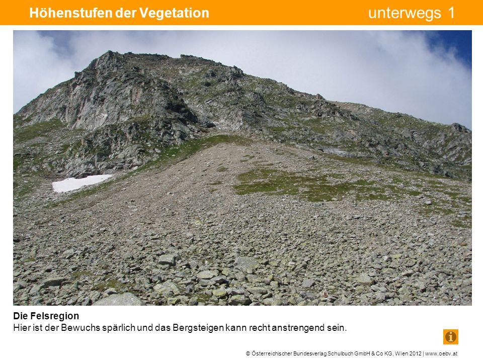 © Österreichischer Bundesverlag Schulbuch GmbH & Co KG, Wien 2012 | www.oebv.at unterwegs 1 Höhenstufen der Vegetation Die Felsregion Hier ist der Bewuchs spärlich und das Bergsteigen kann recht anstrengend sein.