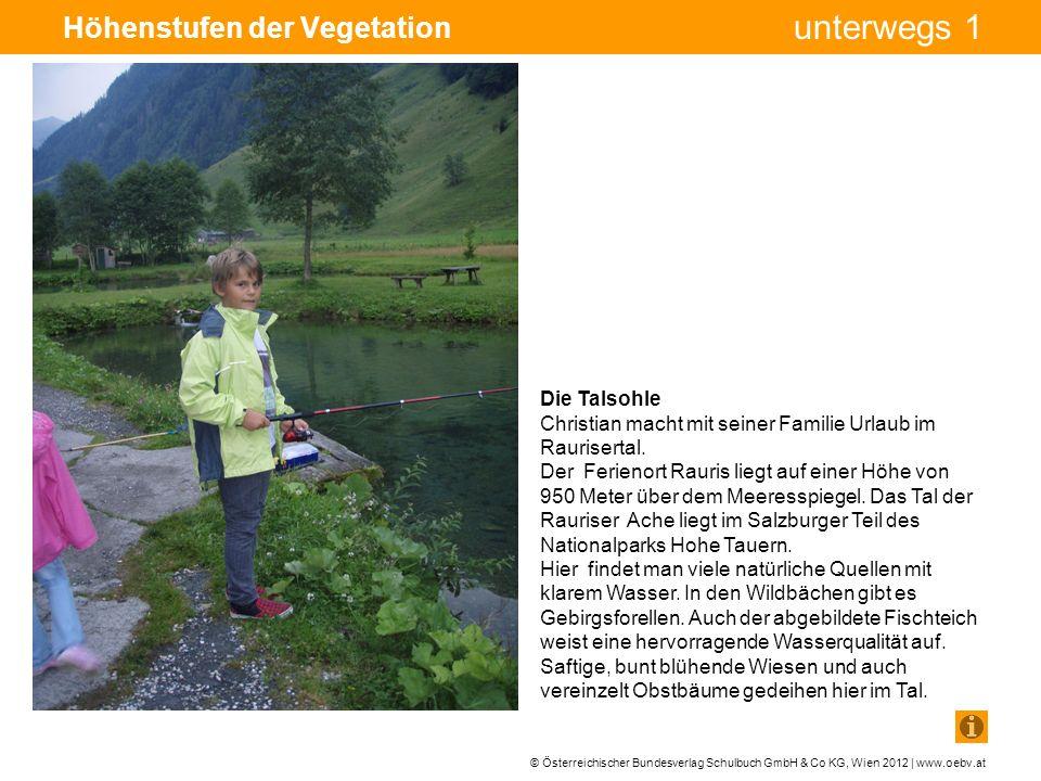 © Österreichischer Bundesverlag Schulbuch GmbH & Co KG, Wien 2012 | www.oebv.at unterwegs 1 Höhenstufen der Vegetation Die Fels-, Schnee- und Eisregion Das Foto zeigt den Gletscher von der Nähe: Gletscherspalten und wie sehr das Eis schon abgeschmolzen ist.