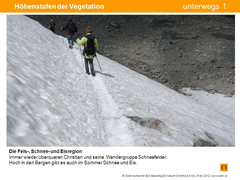 © Österreichischer Bundesverlag Schulbuch GmbH & Co KG, Wien 2012 | www.oebv.at unterwegs 1 Höhenstufen der Vegetation Die Fels-, Schnee- und Eisregion Immer wieder überqueren Christian und seine Wandergruppe Schneefelder.