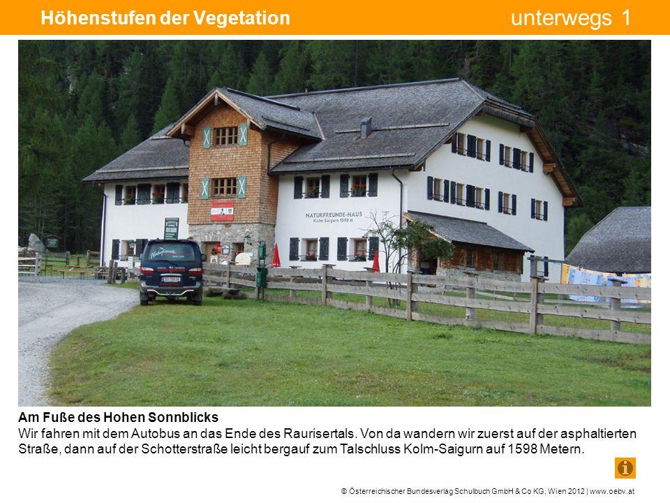 © Österreichischer Bundesverlag Schulbuch GmbH & Co KG, Wien 2012 | www.oebv.at unterwegs 1 Höhenstufen der Vegetation Am Fuße des Hohen Sonnblicks Wir fahren mit dem Autobus an das Ende des Raurisertals.