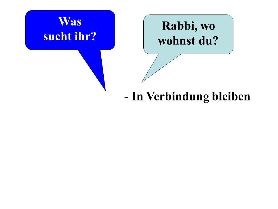 Was sucht ihr? Rabbi, wo wohnst du? - In Verbindung bleiben