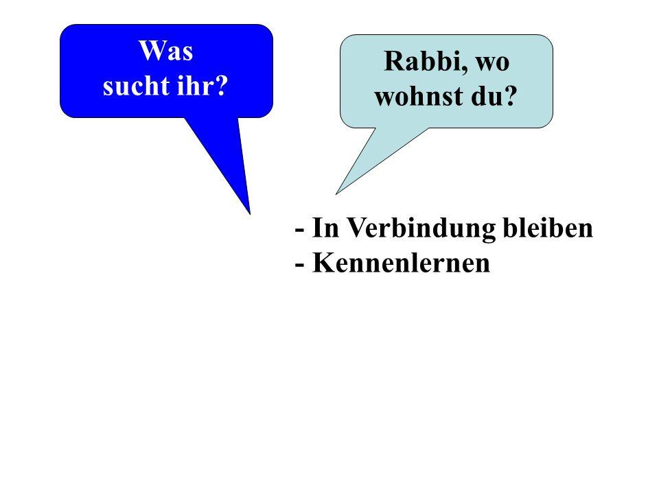 Was sucht ihr? Rabbi, wo wohnst du? - In Verbindung bleiben - Kennenlernen