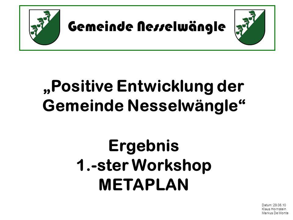 Gemeinde Nesselwängle Datum: 29.06.10 Klaus Hornstein Markus De Monte Positive Entwicklung der Gemeinde Nesselwängle Ergebnis 1.-ster Workshop METAPLAN