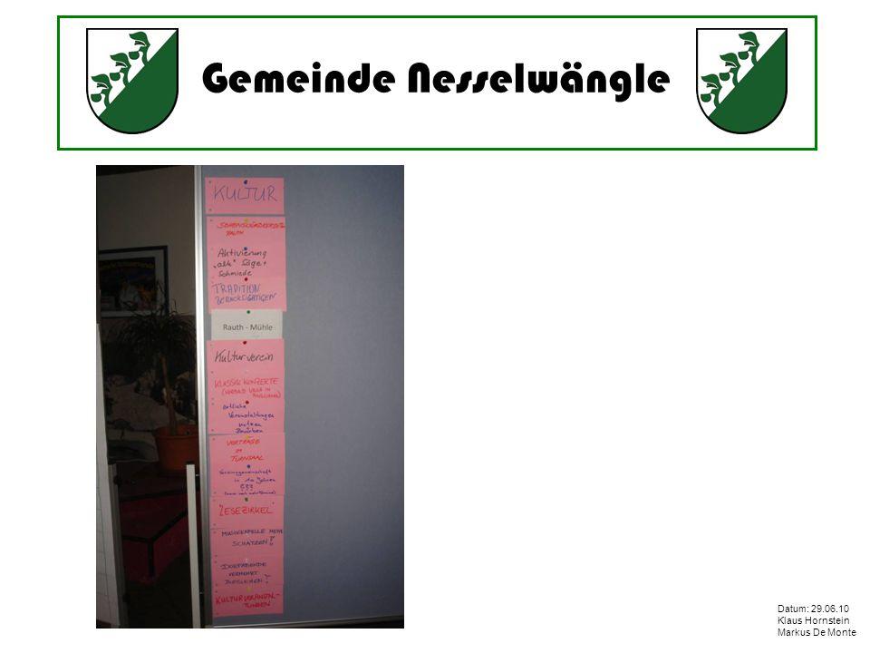 Gemeinde Nesselwängle Datum: 29.06.10 Klaus Hornstein Markus De Monte Projektstatus Projekte mit hohem Aufwand organisierbar bzw.