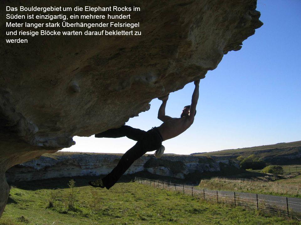 Das Bouldergebiet um die Elephant Rocks im Süden ist einzigartig, ein mehrere hundert Meter langer stark Überhängender Felsriegel und riesige Blöcke warten darauf beklettert zu werden